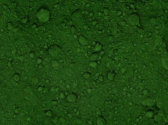 Nannochloropsis gaditana