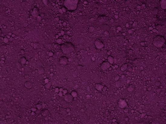 Porphyridium cruentum